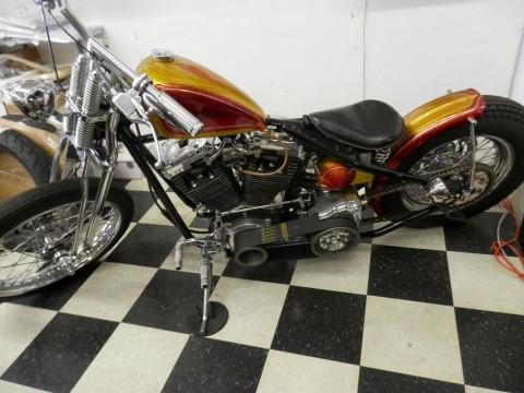 2015 Custom Harley-Davidson motorcycle for sale