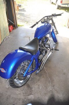 Indian style 2004 Custom Softail Harley for sale